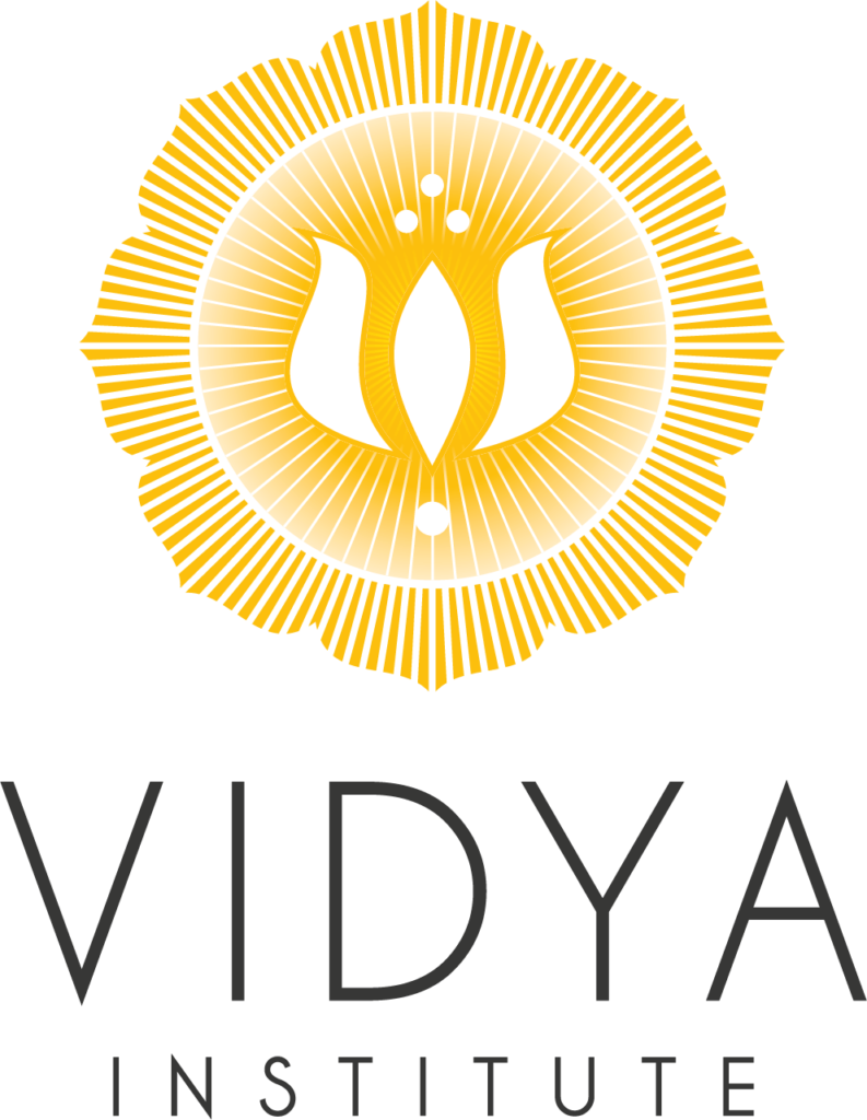 Vidya Institute logo square-transparent